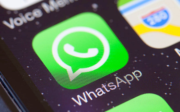 Canale Sicurezza - WhatsApp Bludis Panda Security