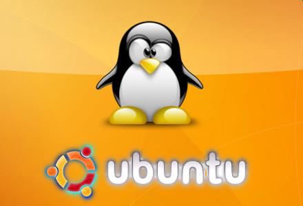 Canale Sicurezza - Ubuntu - Tux