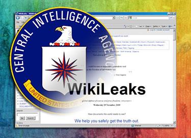 Canale Sicurezza - wikileaks